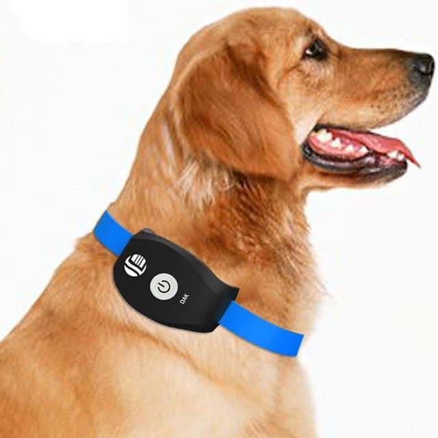 Mascotas-Perros-Rastreadores-GPS